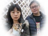 東京キャットガーディアン 里親を待っている猫たち