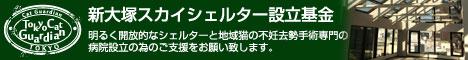東京キャットガーディアン シェルター&地域猫病院増設にご協力を